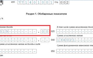 Строка 020 6-НДФЛ: какие суммы включать, что туда входит