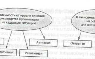 Кадровая политика организации – что это такое, виды, типы и элементы