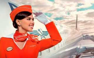 Сколько зарабатывают стюардессы: в России, в Аэрофлоте и в мире