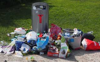 Штраф за вывоз и выброс мусора в неположенном месте